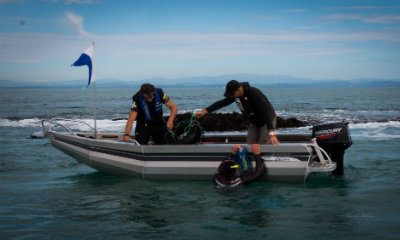 Profile Boats 1410D Dive